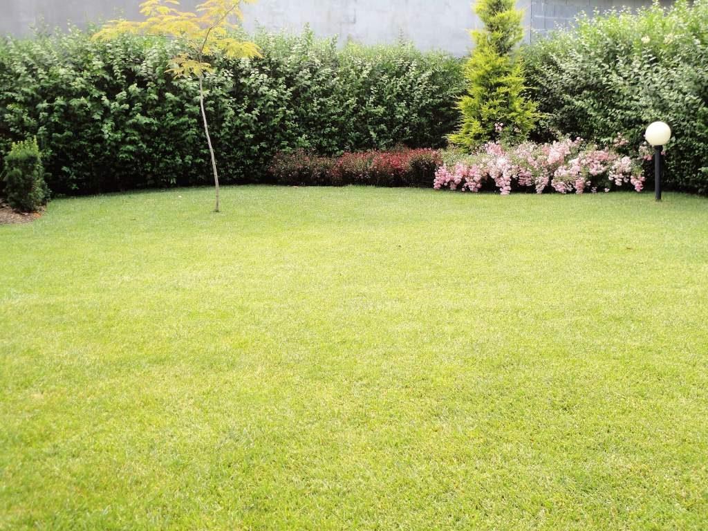 градината с беседка